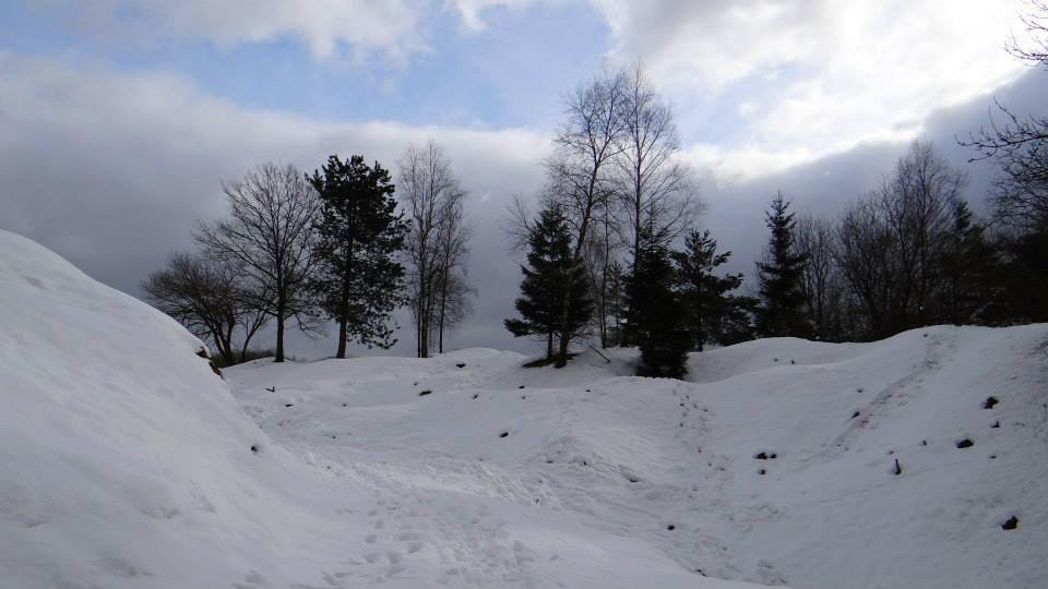 trail paysage